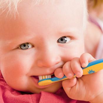 Prophylaxe: Kleinkind putzt seine Zähne mit einer Kinder-Zahnbürste.